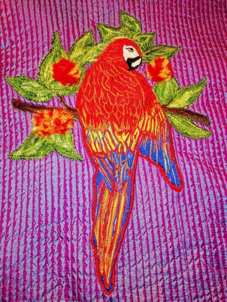 Nikki 3 parrot
