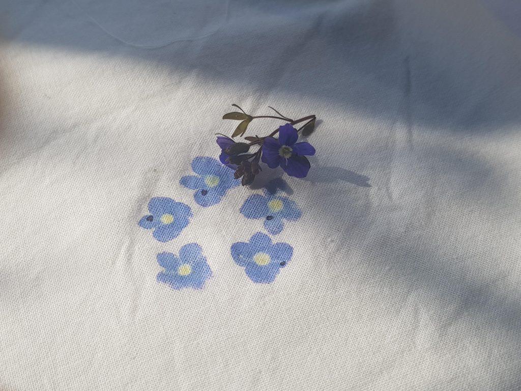 Tase flowers 2