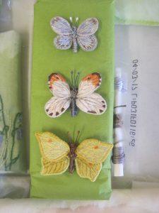 June 17 Butterflies