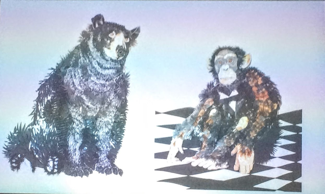 black bear and monkey