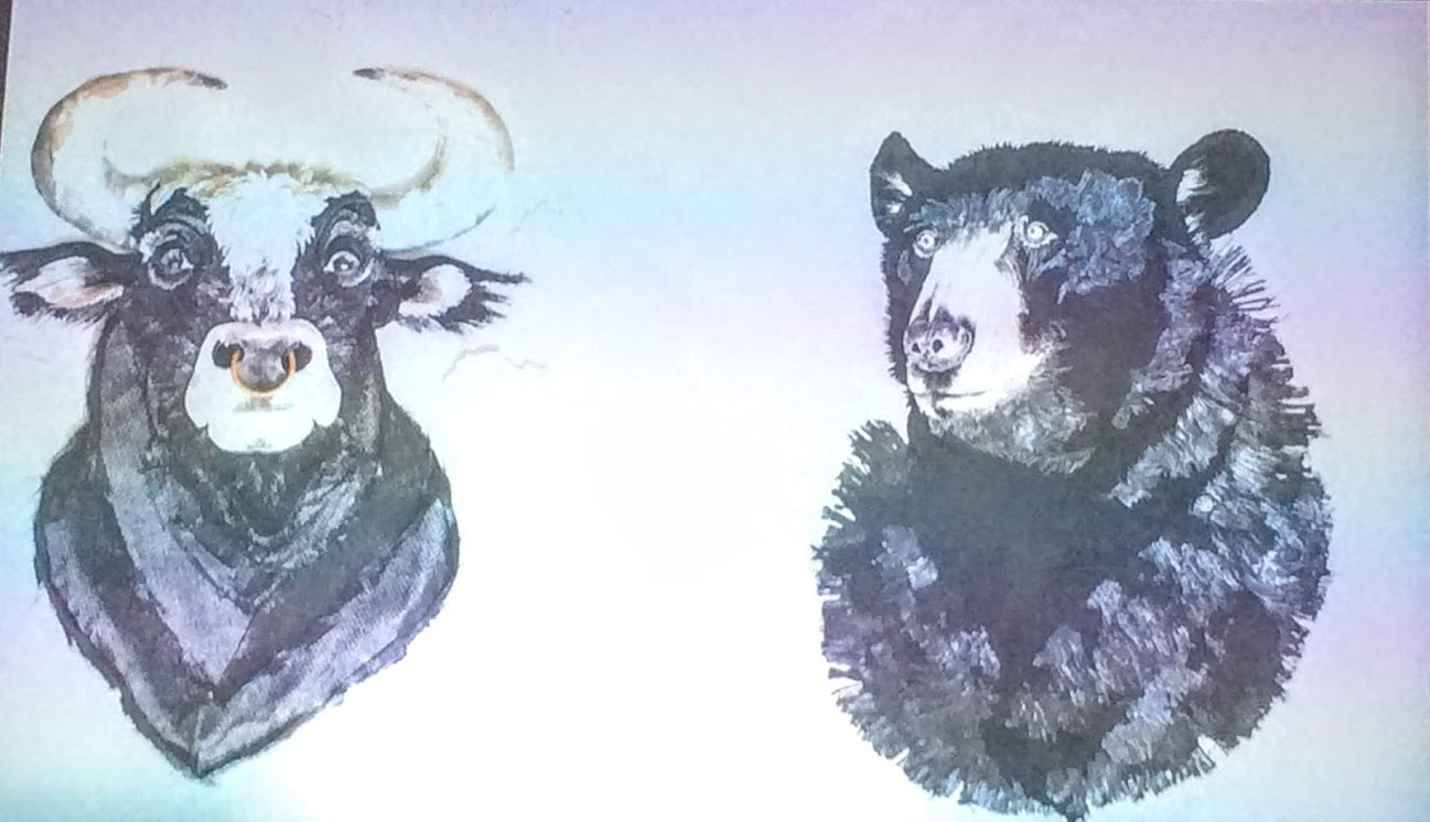 bull and black bear