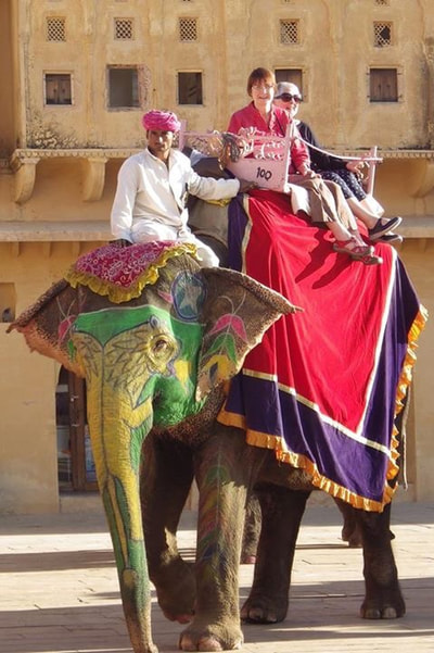 elephant copy