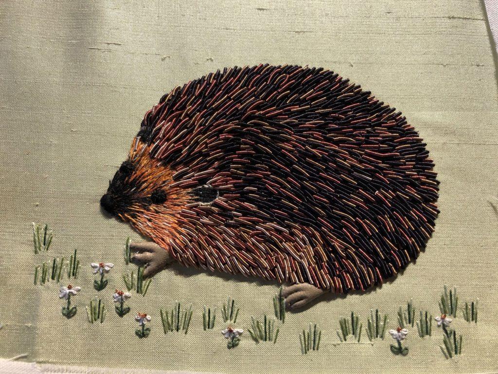 Linda Hedgehog Feb 21